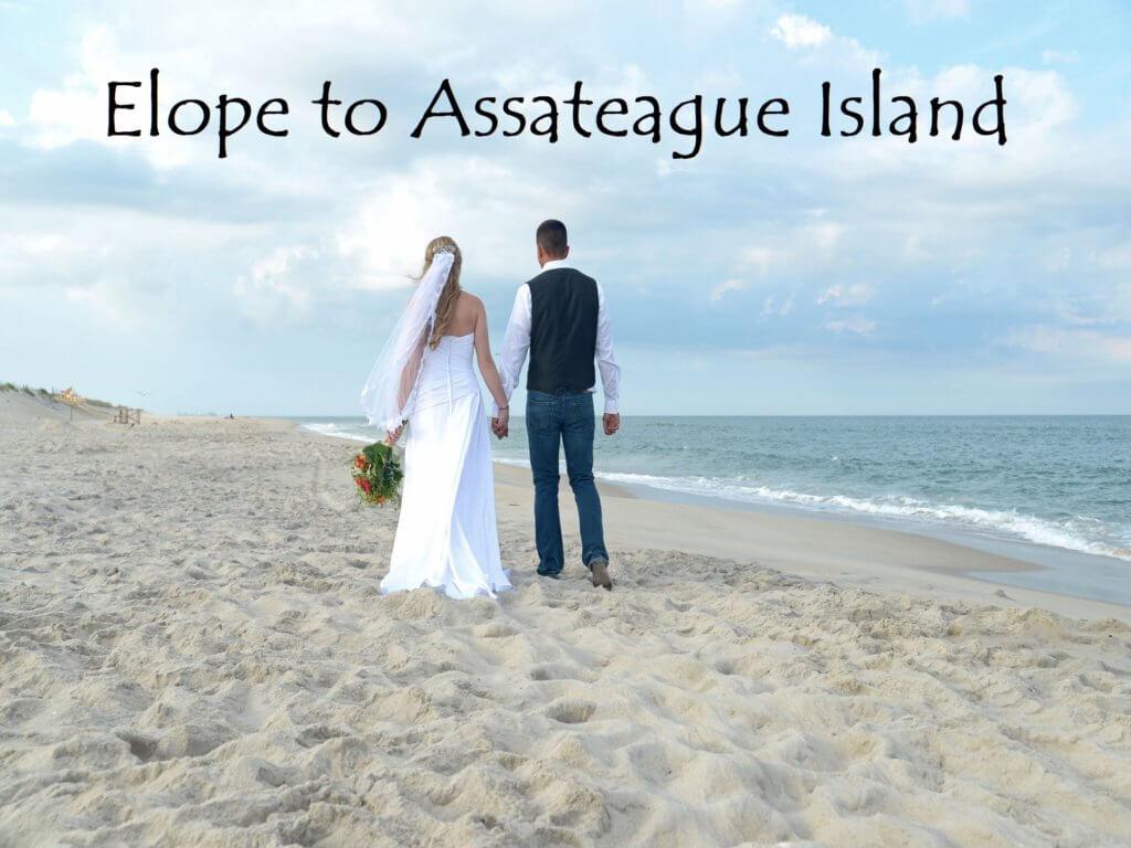 Assateague Beach Wedding