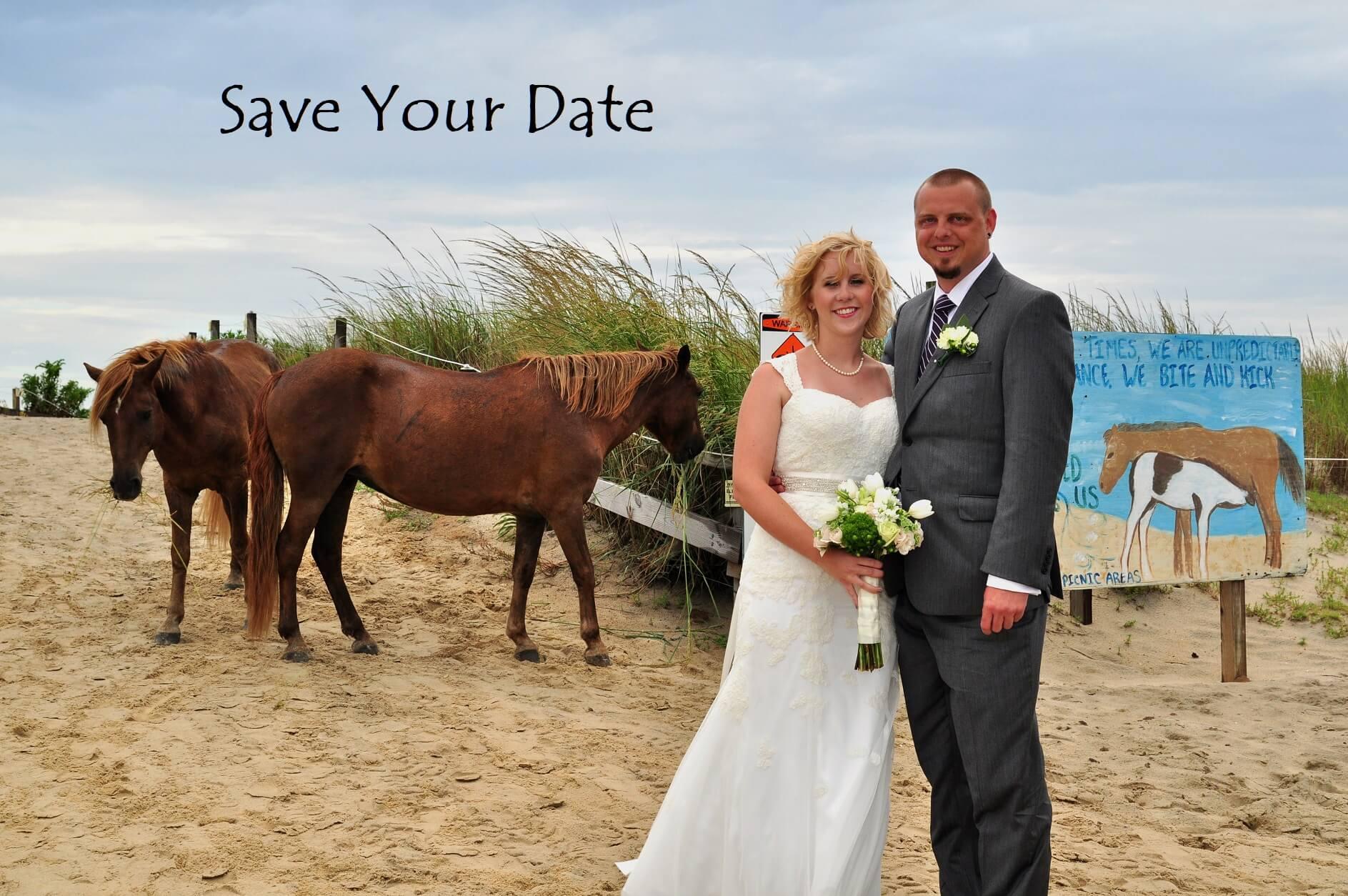 How to Plan an Assateague Beach Wedding